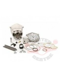 Set motor Malossi MHR TEAM...