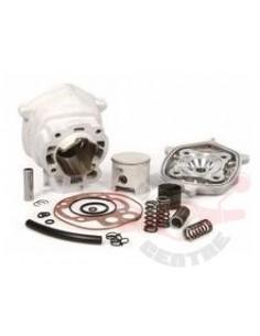 Set motor Malossi MHR...