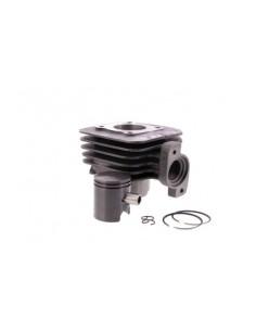 Set motor 50cc 2T Peugeot...