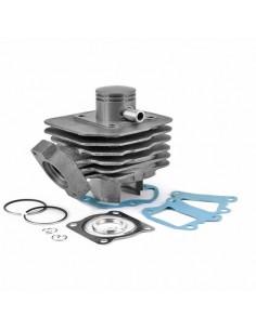 Set motor 50cc 2T PEUGEOT BUXY Ac